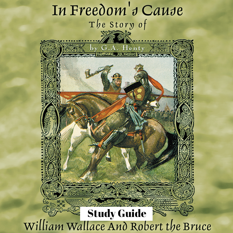 Mountain of Grace Homeschooling: In Freedom's Cause Review